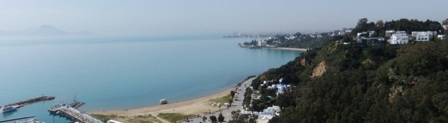 Tunis view over the ocean