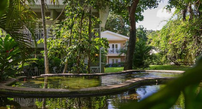 Tropical garden at Sandals Ochi Beach Resort