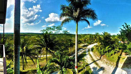 View from Rumors Resort