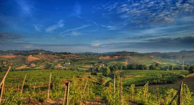 Chianti Region - Italy